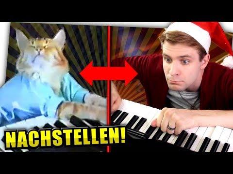 Bekannte Youtube-Memes nachstellen! - Zeo