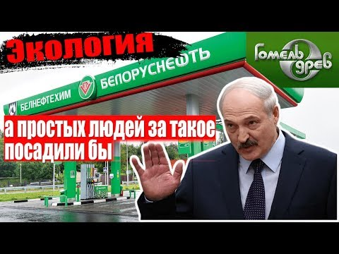 Лукашенко Белоруснефть и Гомельдрев  шкодничают/Общество Гомель