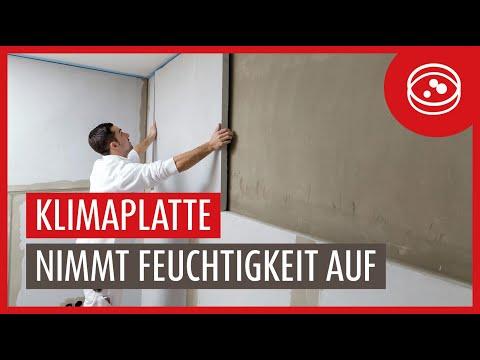 Auch im Sommer gibt es Schimmelgefahr / Besonders Keller und kühle Räume sind betroffen