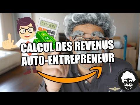 Revenus Auto entrepreneur: combien tu gagnes avec amazon fba ou ton ecommerce ? (Comptabilité)
