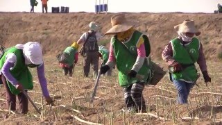 Pumped Dry: A conflict over water in Peru