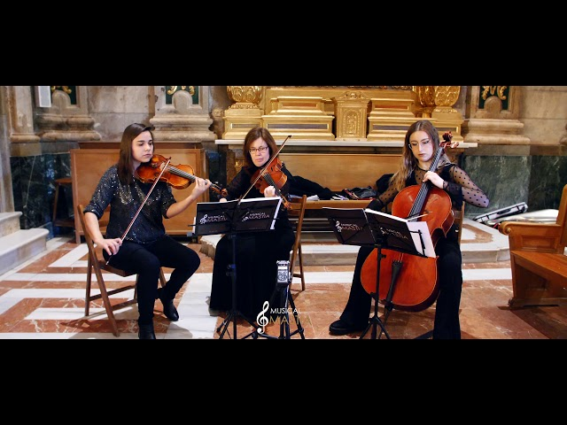 Trio de cuerda | Sarabande Haendel | Bodas Murcia | Musica para Bodas Murcia