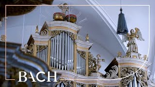 Bach - Fantasia and fugue in C minor BWV 537 - Wiersinga | Netherlands Bach Society