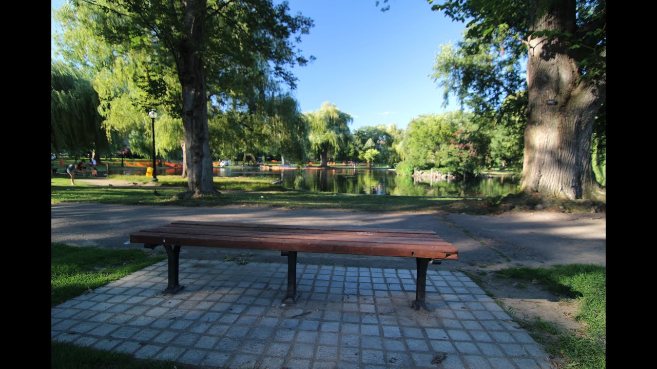 Good Will Hunting Bench In Boston Common Youtube