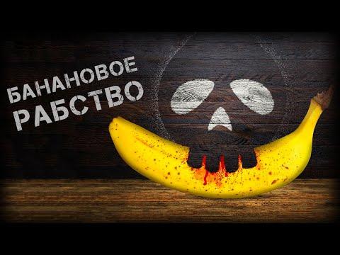 Банановая индустрия Эквадора: