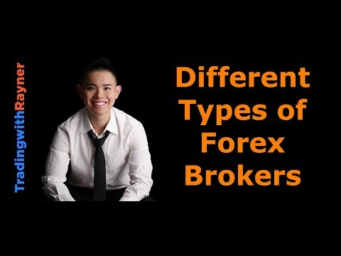 forex-trading-for-beginners-#11:-the-different-types-of-forex-brokers-by-rayner-teo