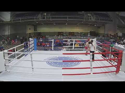 WAKO Hungarian Kickboxing