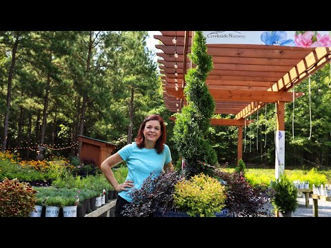 Fall Planters at Creekside Nursery // Gardening with Creekside
