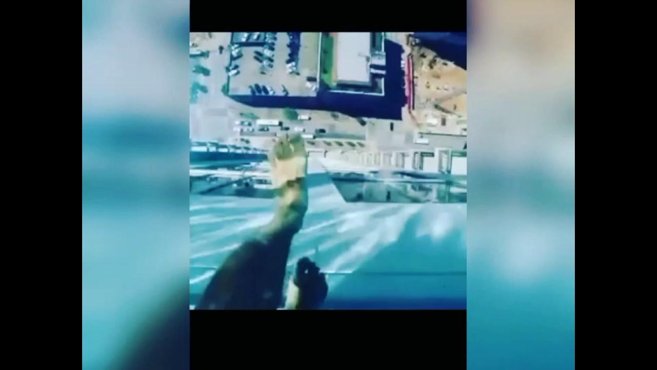 Glass floor swimming pool youtube