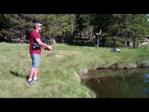 Fly Fishing At Tuolumne Meadows 2013
