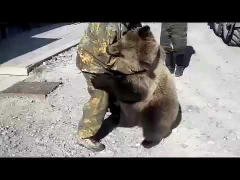 Russian Man Vs Bear