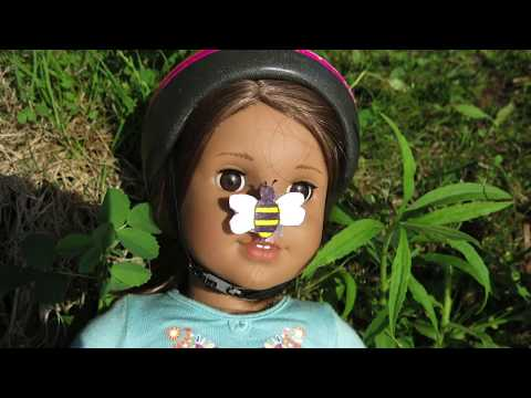 The Bee Incident 😱🐝AmericanGirl Doll Stopmotion