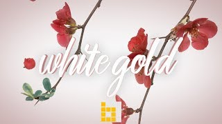 Free Chill Rap Beat Hip Hop R&B Instrumental - White Gold | Beatowski