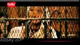 سيد الشيخ   فيديو اغنية في المحكمه فيديو كليب   اكتشف الموسيقى في موالي