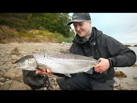 Summer Sea Trout Fishing - Big Sea Trout On Speed Spin!