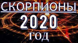 ГОРОСКОП СКОРПИОНЫ НА 2020 ГОД