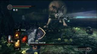 Dark Souls: Great Gray Wolf Sif Gameplay Movie (PS3, Xbox 360)