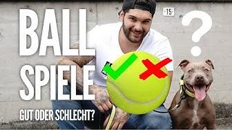 Sind Ball Spiele für HUND wirklich schlecht? | Oder ein super Training für den Hund?