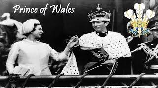 IN-HISTORY I เจ้าชายแห่งเวลส์