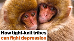 Loneliness kills: How to fight depression with social support | Johann Hari