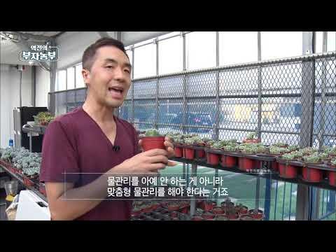 역전의 부자농부 57회 - 다육식물&허브