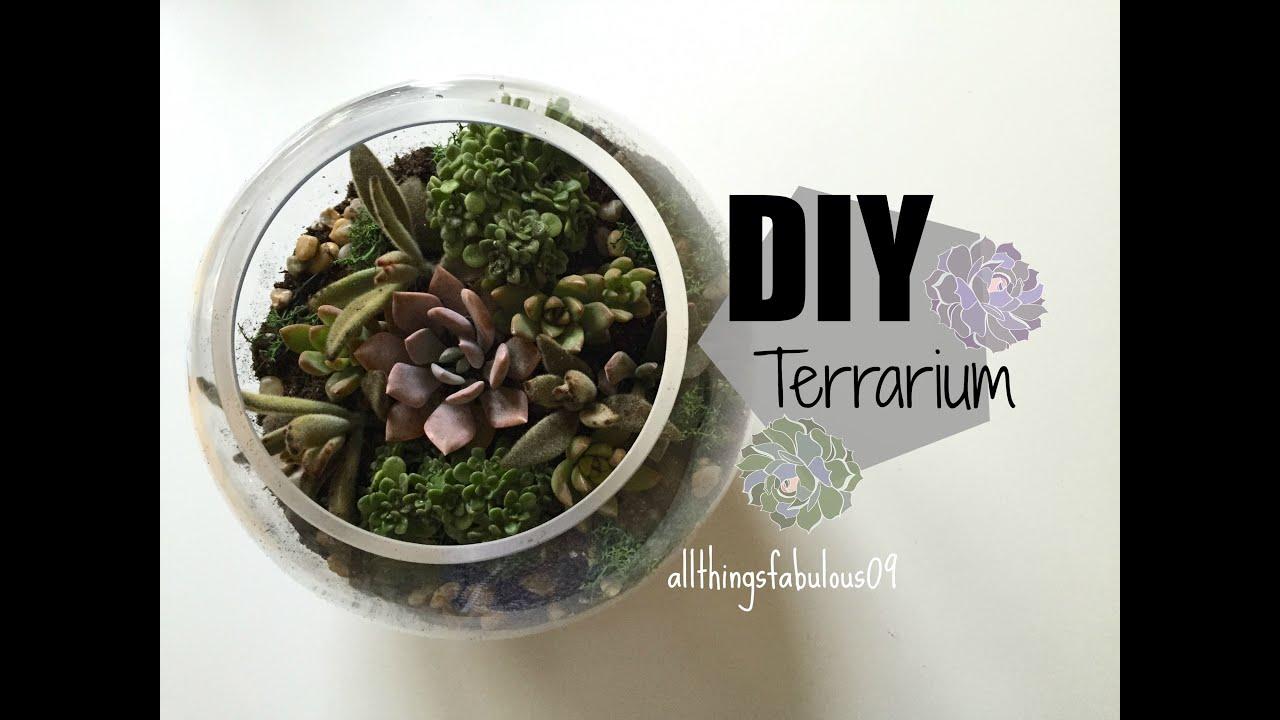 Diy Terrarium Youtube