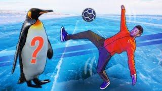 ON TESTE LE FOOTBALL SUR GLACE !