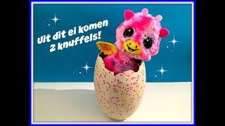 NIEUW in Nederland Hatchimals Surprise TWEELING