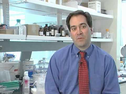Professor Chad Mirkin welcomes you to DiscoverNano