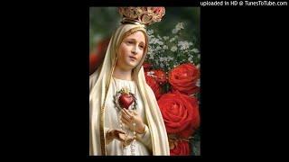 張神父與你一起祈禱0516_恭敬聖母無玷聖心