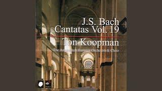 """Ich habe meine Zuversicht BWV 188: Recitative (Bass) : """"Gott meint es gut mit jedermann"""""""