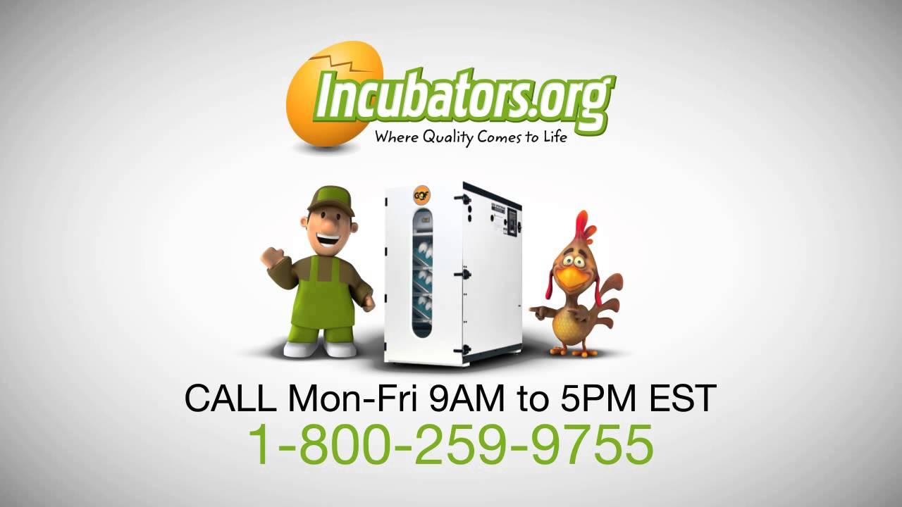Cabinet Incubator Kit Gqfdigital Sportsman Cabinet Incubator 1502 Youtube