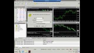 Install Metatrader 4 on your VPS for MT4
