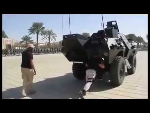 فيديو: قوة السيف الأجرب .. التي قبضت على الـ11 أميرا سعوديا!