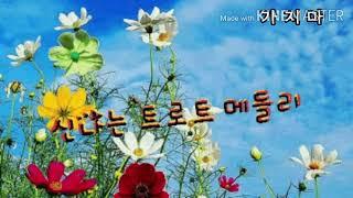 미현의 신나는트로트 메들리 22곡#단심이#연모#가지마#추풍령#선창...