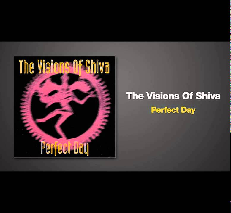 Paul van Dyk Remix of PERFECT DAY by Visions Of Shiva