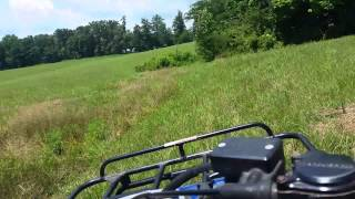 Riding around the farm in Tennessee