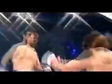 Download Os nocautes mais brutos do MMA!