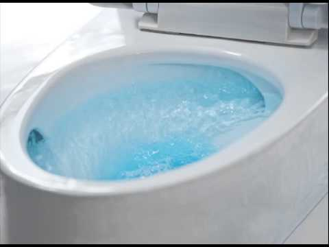Toilet Flush Sound Effect In High Quality - YouTube
