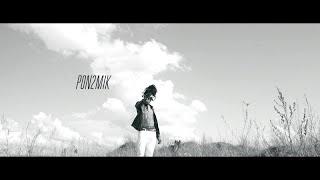 Pon2Mik - SDF