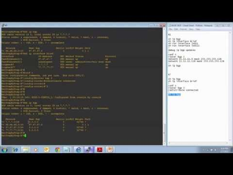 Cisco Network CCNP BGP - Prefixes