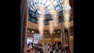 ウィンターガーデンのクリスマスに向けた飾りつけです。
