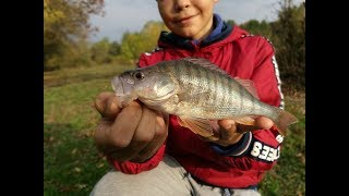 Риболов на костур / Perch fishing
