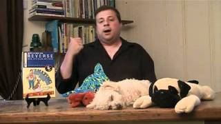 Dog Training - How To End Your Dog's Behavior Problems