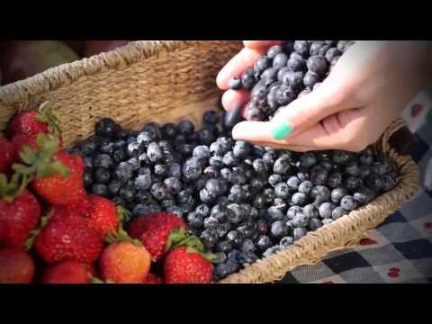 Ontelaunee Orchards Whats Picking Now HD