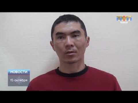 ТНТ-Поиск: На Ленинградском шоссе сбили ребенка