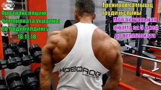 Про трансляцию Чемпионата Украины. Тренировка мышц груди и спины. Без соли. Сушка. Актуальная форма