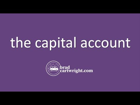 Balance Payments Unit:  The Capital Account