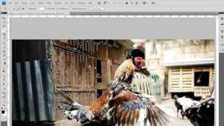 Photoshop CS4 Tutorial - First six tools overview (beginner)