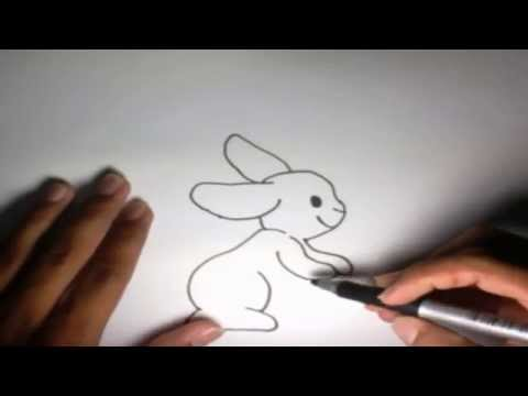 Como dibujar un Conejo l How to draw a Rabbit  YouTube